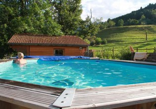 Photo 3 - House in Mitzach with swimming pool