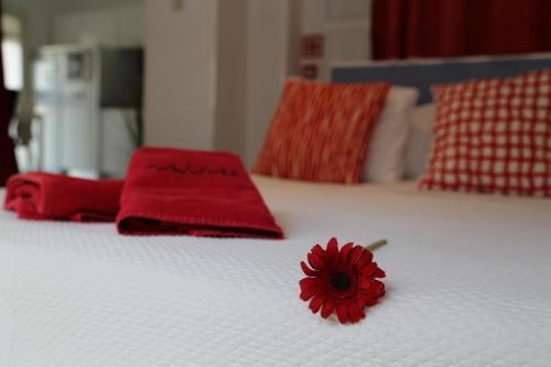 Foto 2 - Apartamentos Taifas