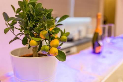 Foto 12 - Famousali Luxurious Vip Apartment