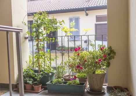Foto 9 - Homy Apartments Altaguardia