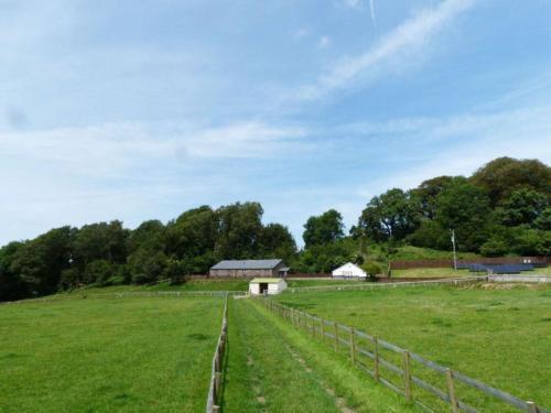 Photo 4 - Holiday Home Cwm Tawel