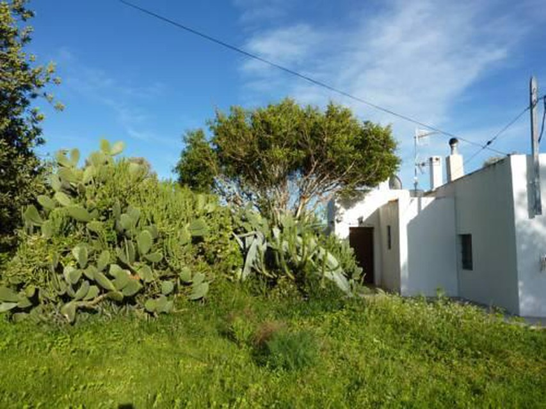 Foto 18 - Holiday Villa in Ibiza