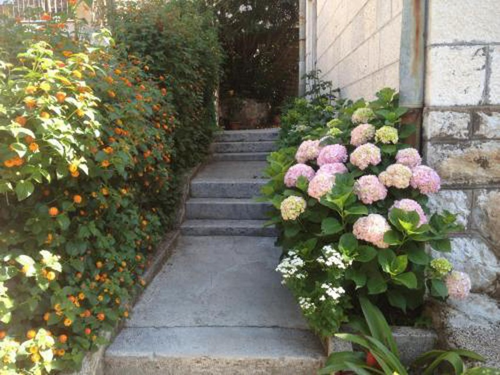 Photo 16 - Apartment Flora