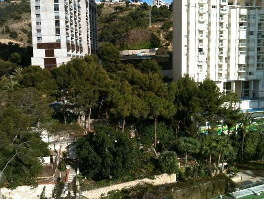 Photo 23 - Torres Gardens - Fincas Benidorm