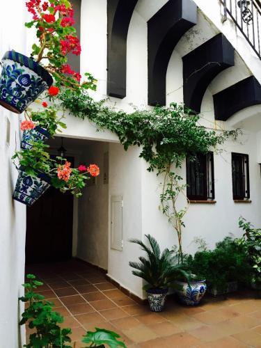 Foto 13 - Casa callejon de Echevarria