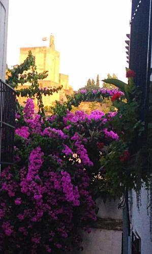 Foto 20 - Casa callejon de Echevarria