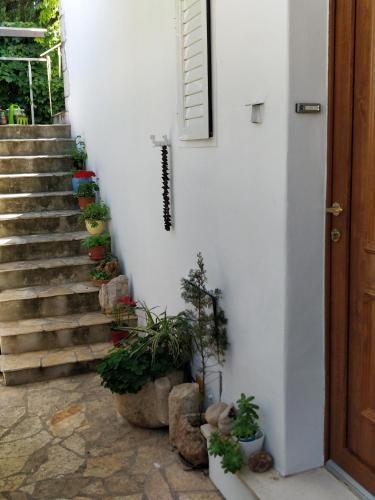 Photo 28 - Adriatic Apartments