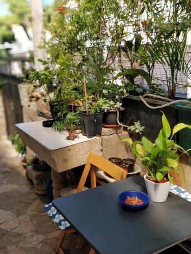 Photo 26 - Adriatic Apartments