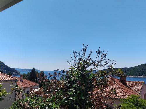 Photo 14 - Adriatic Apartments