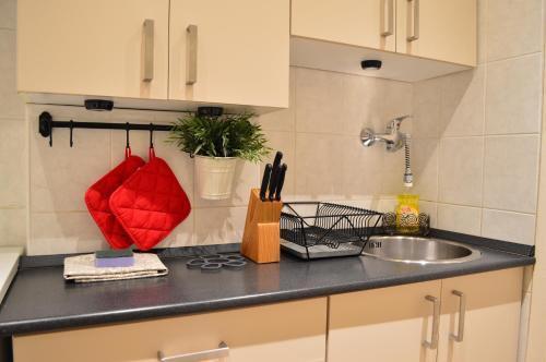 Photo 20 - Apartment Akademia