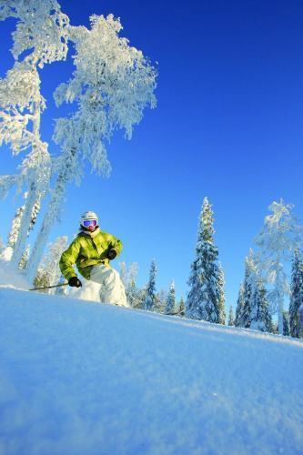 Photo 24 - Ukkohalla Ski Chalets Apartments