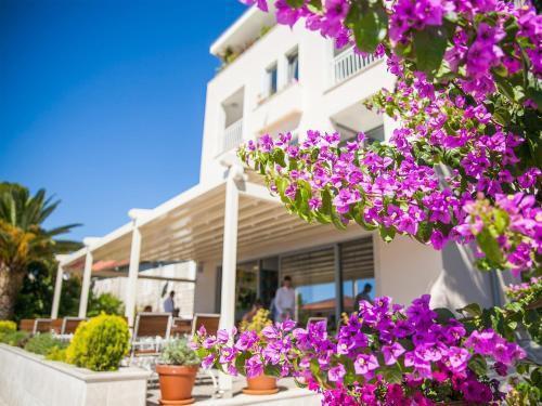 Photo 1 - Hotel Casa del Mare - Blanche