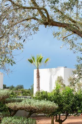 Foto 11 - OD Can Jaume Private Villas