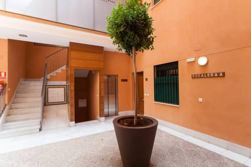 Photo 26 - Green-Apartments Plaza Nueva Ii