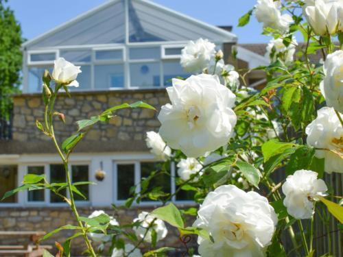 Photo 14 - Apartment Llawr y Llyn