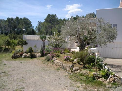 Foto 10 - Villa Es Socorrat