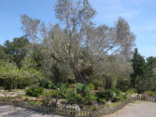 Foto 23 - Villa Es Socorrat