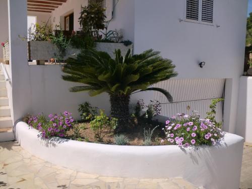 Foto 36 - Villa Es Socorrat