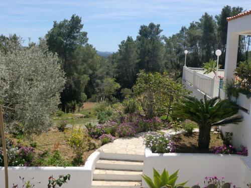 Foto 13 - Villa Es Socorrat