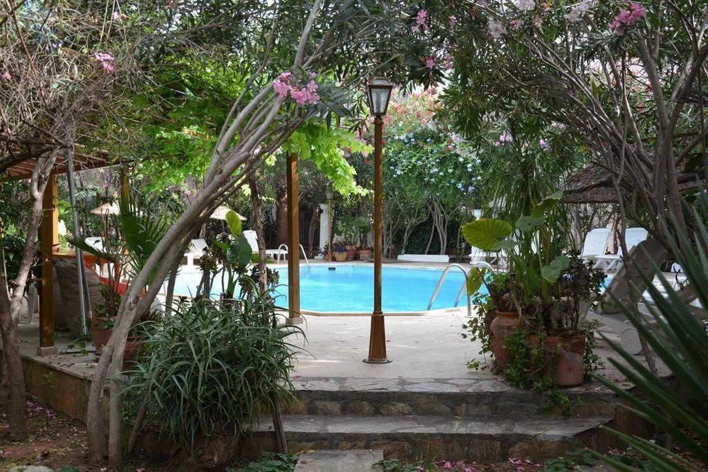 Photo 7 - Villa Poseidon