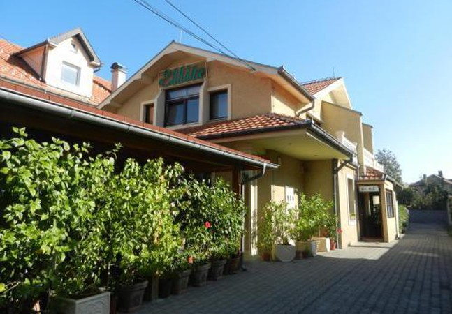 Photo 1 - Guesthouse Ellite