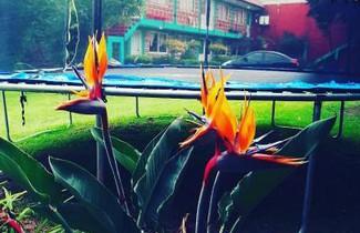 Foto 1 - Hotel Las Fumarolas de Don Goyo Cholula
