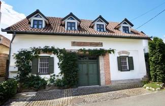 Photo 1 - Troszt Pince Apartman