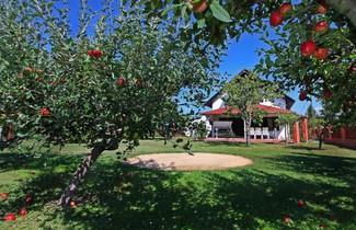 Photo 1 - Holiday Home Balaton H449