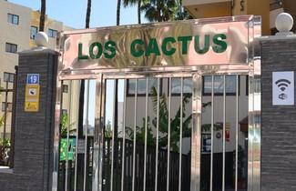 Foto 1 - Los Cactus