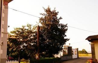 Photo 1 - Agriturismo Greppi