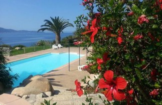 Foto 1 - Apartment in Olmeto with private pool