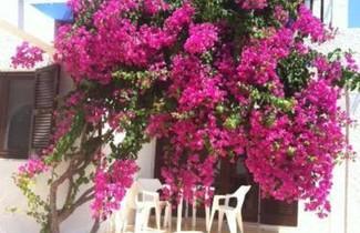 Photo 1 - Apartamentos Blue Beach Menorca