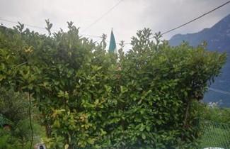 Photo 1 - La Ruota del Mulino