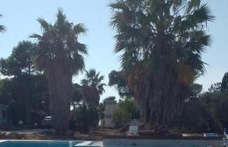 Photo 1 - Rivamar Resort