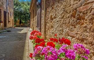 Photo 1 - Locazione turistica Il Cardo