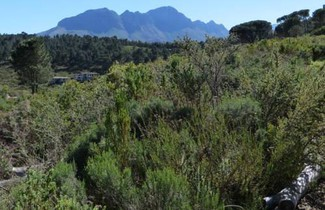 Photo 1 - Vrede Self-Catering