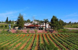 Photo 1 - Quinta dos Vales Wine Estate