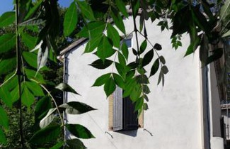 Photo 1 - House in Castelnaudary with terrace