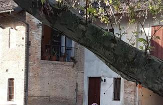Photo 1 - Apartment in Castellinaldo d'Alba