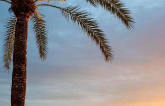 Foto 1 - Apartamentos Llobet Ibiza