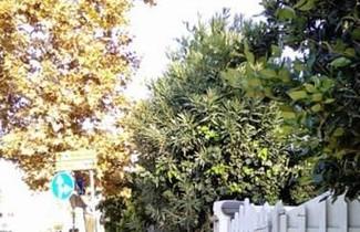Home Beach Mondello Galatea 1