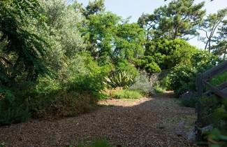 Photo 1 - Le Lodge du Cap Ferret