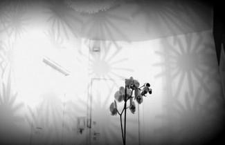 yHome | Barletta Home Apartment 1