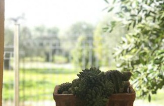 Foto 1 - Apartment in Montescaglioso mit terrasse