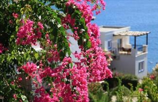 Foto 1 - Aktur Residence