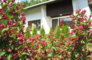 Photo 1 - Ferienhaus-Lind