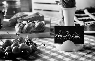 Photo 1 - Farmhouse in Capalbio