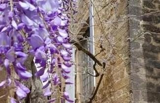 Foto 1 - Apartment in Sarlat-la-Canéda