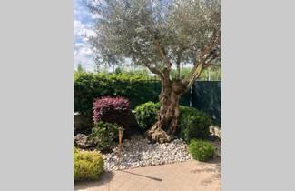 Photo 1 - Apartment in Montichiari