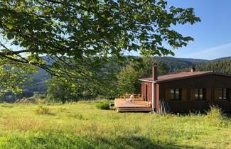 Photo 1 - Chalet in Granges-Aumontzey mit terrasse